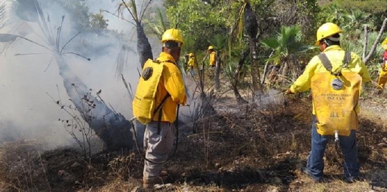 incendios_forestales_guerrero