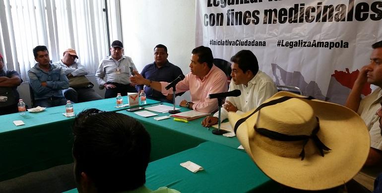 ley_amapola_iniciativa_ciudadana