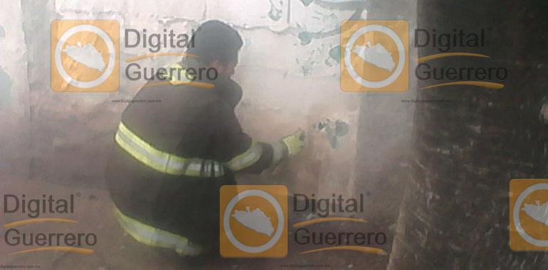 Sufren picaduras de abejas dos niños en kínder de Chilpancingo; evacuan al resto 1