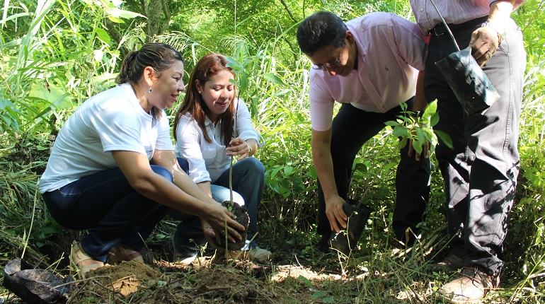 campaña_reforestacion_parque_limon (2)