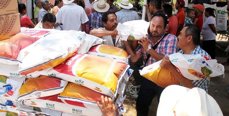 entrega_fertilizante_acapulco